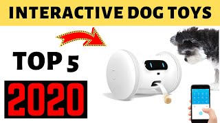 Best Interactive Dog Toys 2020  | Top 5 Dog Toys Amazon