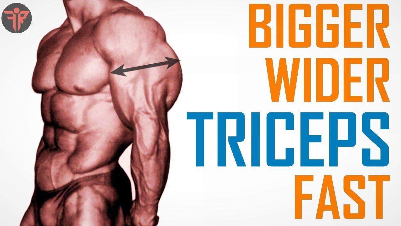 HINDU PUSH UP (11/12 - सर्प दंड) | Indian push ups & desi dand baithak for  Bigger Triceps