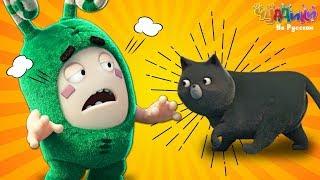 Чуддики | Если чёрный кот дорогу перейдёт! | Смешные мультики для детей