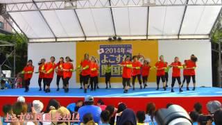 武山中学校 リズムダンス部 花組 2014  ドリーム賞