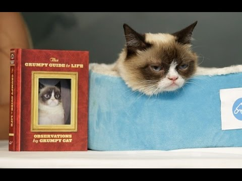 Grumpy Cat's Latest Book Signing In New York (featuring Crazy Cat Lady)