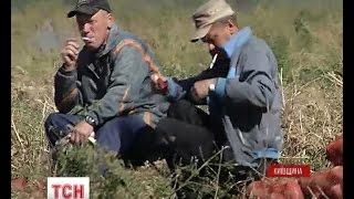 Засуджені Кагарлицької виправної колонії передали на Схід вирощені власними руками овочі