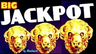 ★ WOW! ★  BUFFALO GOLD slot machine JACKPOT HANDPAY WIN! (15 Gold heads collected)