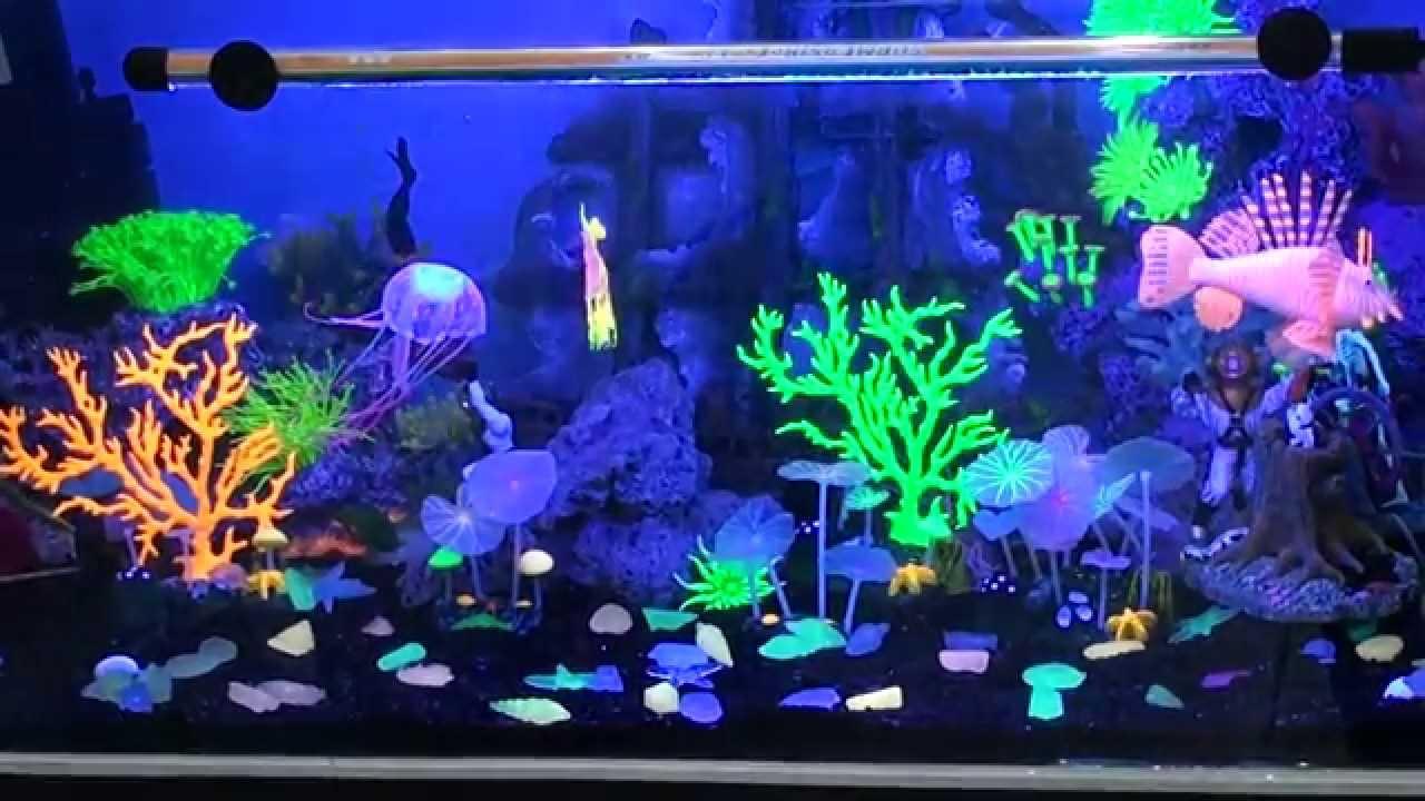 Декорации для аквариума по отличным ценам. Лучшие предложения в интернет-магазине — «3 рифа». Звоните и заказывайте прямо сейчас!. Доставка по всей украине.