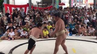 嘉風関と男の子の勝負!!
