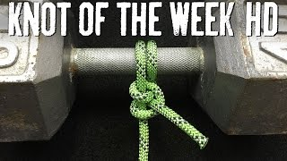 How to Tie a Half Hitch and Hitch Variations - ITS Knot of the Week HD