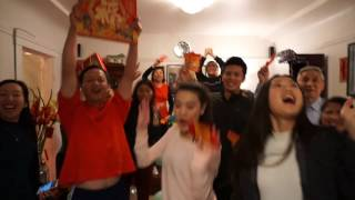 Chinese Lunar New Year 2017