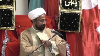 Download Maulana Dr. Sakhawat Hussain Sandralvi Jashn -e- Imam Ali (AS) UpperDarby PA 2014