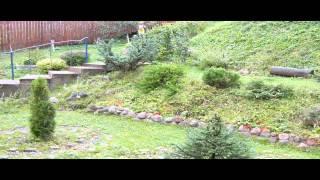 видео Ландшафтный дизайн участка на склоне для дачи