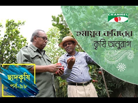 Rooftop farming | EPISODE 98 | HD | Shykh Seraj | Channel i | Roof Gardening | ছাদকৃষি |