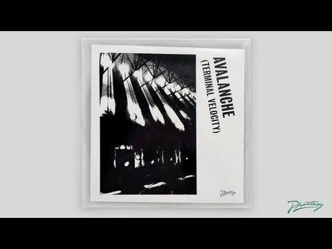 Boys Noize & Erol Alkan feat. Jarvis Cocker - Avalanche (Terminal Velocity) [PH14]