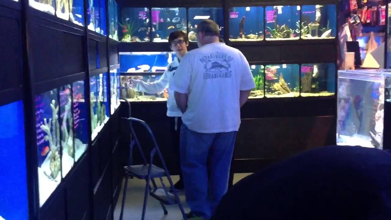 Manhattan Aquariums Nyc Youtube