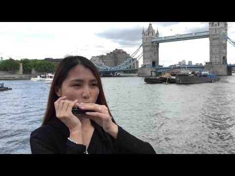 Adele - Someone Like You (Aiden N Evelyn harmonica cover)