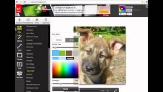 Como editar fotos online gratis