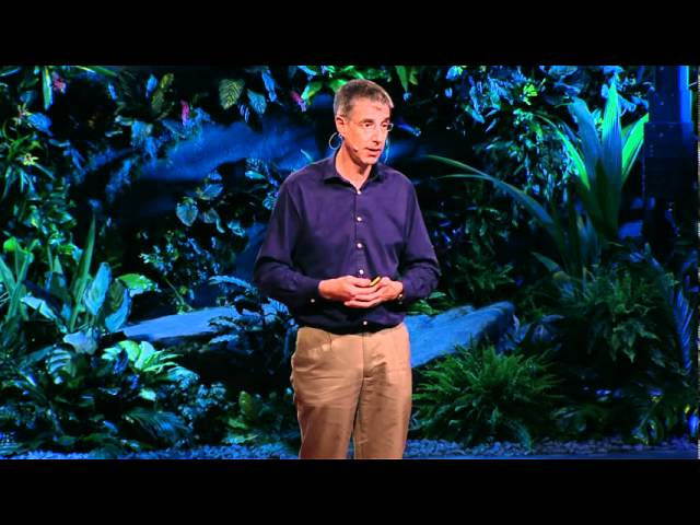 Daniel Wolpert: The real reason for brains