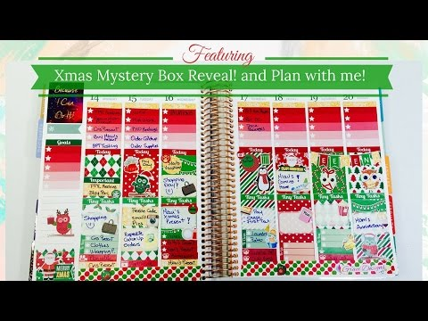 Christmas Mystery Box Reveal and Plan with Me Spread!