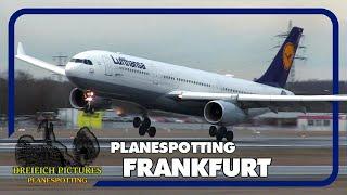 Planespotting Frankfurt Airport   März 2019   Teil 1