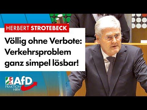 Völlig ohne Verbote: Verkehrsproblem ganz simpel lösbar! – Herbert Strotebeck (AfD)