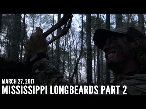 Mississippi Public Land Gobblers Part 2 | Spring Thunder