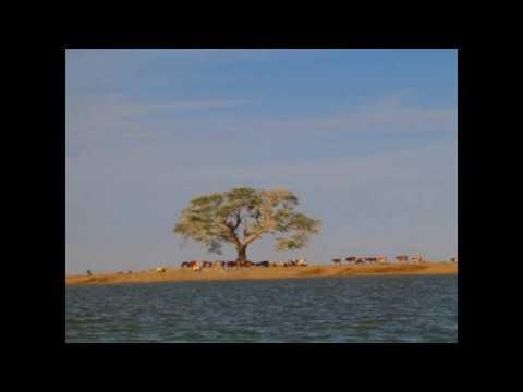 Frank Musy: en descendant le Niger pour monter à Tombouctou...