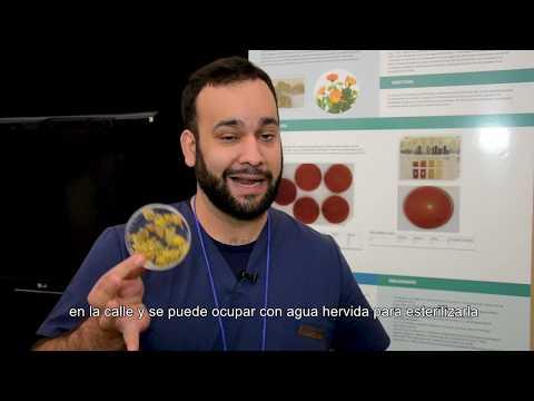 Feria de Ciencias e Innovación - Concepción 2019