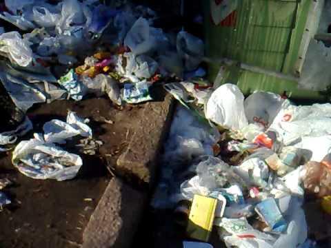 MONTEVIDEO CAOS CAPITULO 02 Mugre en todos los contenedores de basura. postal de montevideo actual