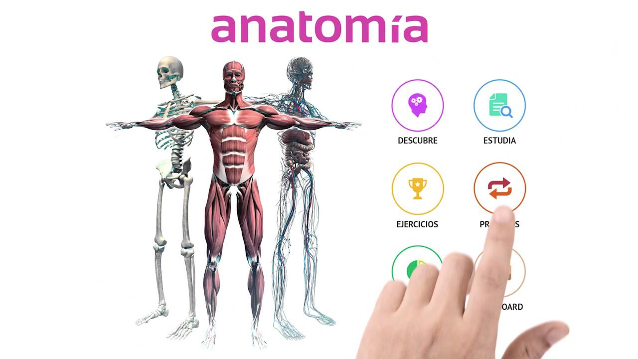 Aplicación 360º de anatomía de Deusto Salud - YouTube