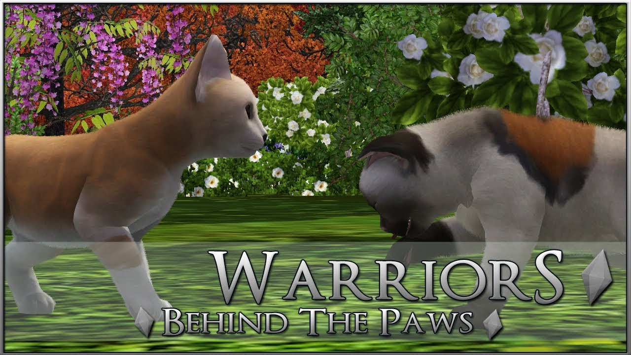 Legacy Warrior Cats Roleplay Mountain Territory Roblox - Checking On Kits Creating Your Warrior Cats Warrior Cats Behind The Paws