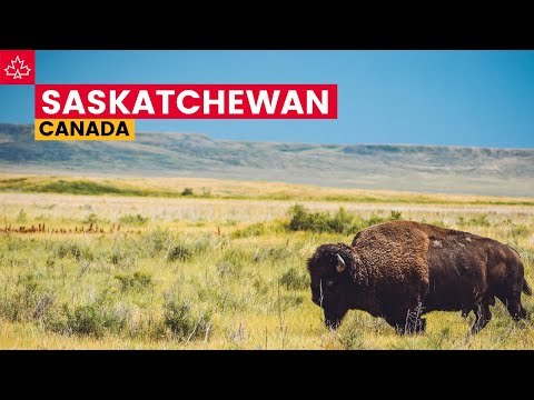 Canada Road Trip: Best Things To Do In Saskatchewan