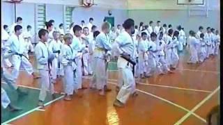 A.V. Dormenko - seminar 2007 - Kokutsu Dachi No Kata