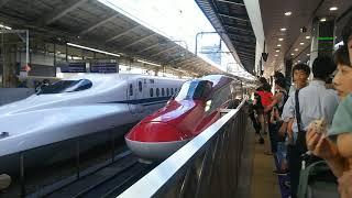 秋田新幹線 こまち31号 秋田行き E6系と東北新幹線 はやぶさ31号 新青森行き E5系 2019.06.16