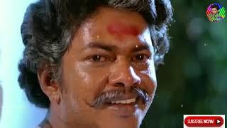 💿Pacha Malai Poovu Nee Uchi HD Video | பச்சை மலை பூவு நீ உச்சி மலை தேனு 🎥Kizhakku Vasal ||