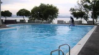 琵琶湖の上をアメンボのようにスイスイ進んでいく乗り物。ジャンプをす...