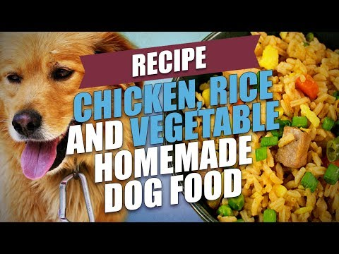 chicken,-rice-and-vegetable-homemade-dog-food-recipe