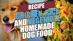 Chicken, Rice and Vegetable Homemade Dog Food Recipe