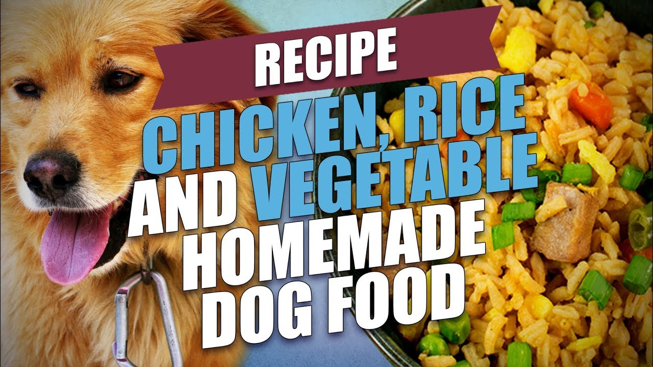 Chicken Rice And Vegetable Homemade Dog Food Recipe Youtube