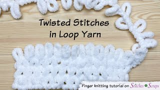Gambar cover Twisted Knit Stitches in Loop Yarn