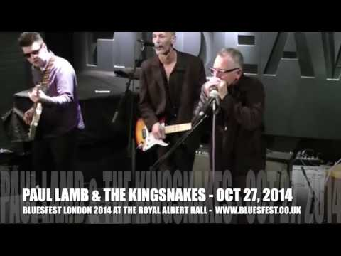 Paul Lamb & The Kingsnakes play live - catch them at BluesFest 2014