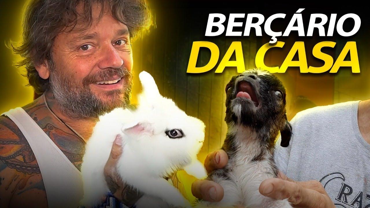 VISITANDO O BERÇÁRIO DA CASA DOS BICHOS!
