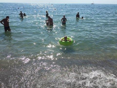 Один день на море: что едим, чем заняты. Что достали из моря?