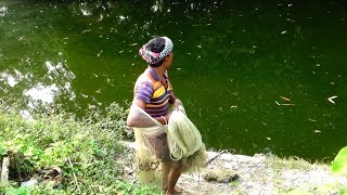 Net Fishing | Catching Big Fish With Cast Net | Net Fishing in the village (Part-55)