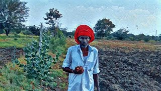 Indian Farmland...