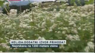 Heljda spas za planinska sela