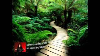 "svetlana malova ""из жизни уходит любовь"""