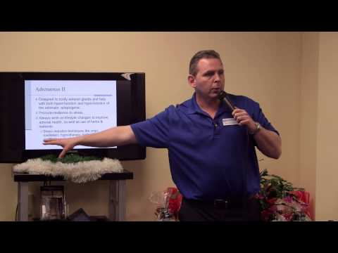 Winer Wellness Center Workshop  Mike G Stress and Adrenal Solutions