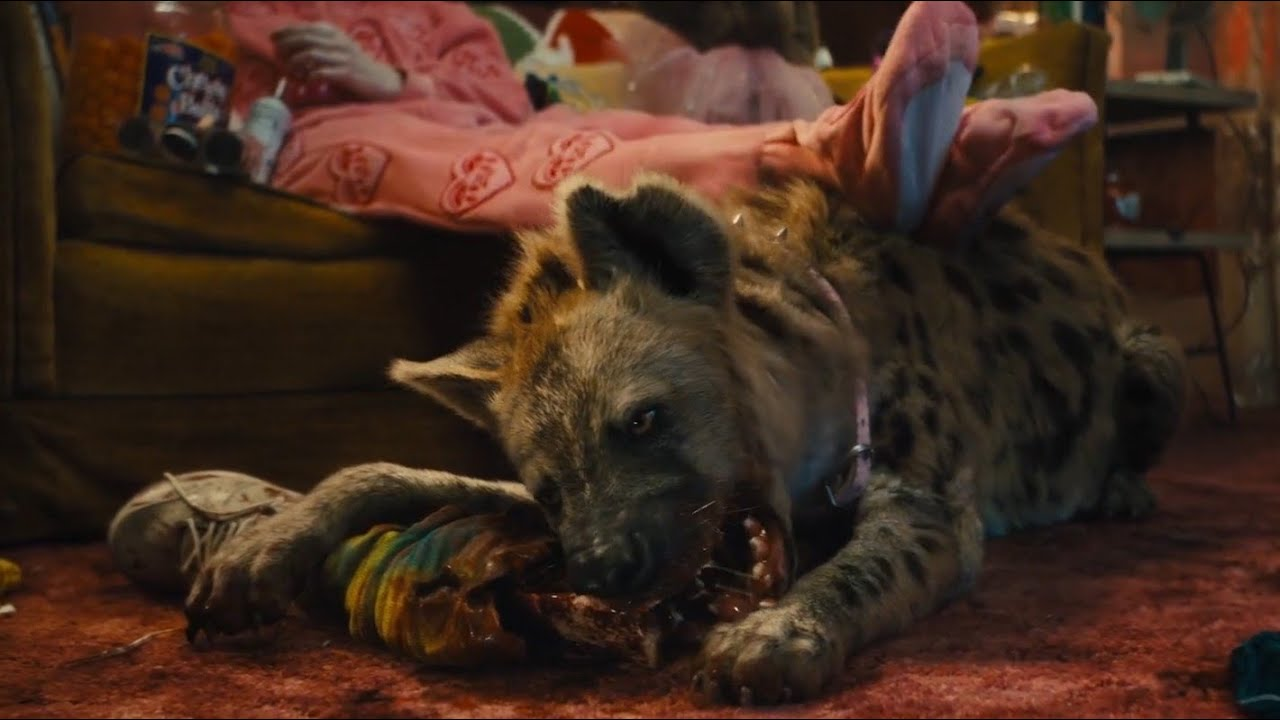 Birds Of Prey All Hyena Scenes Youtube