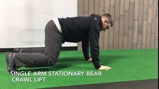 Single Arm Stationary Bear Crawl Lift