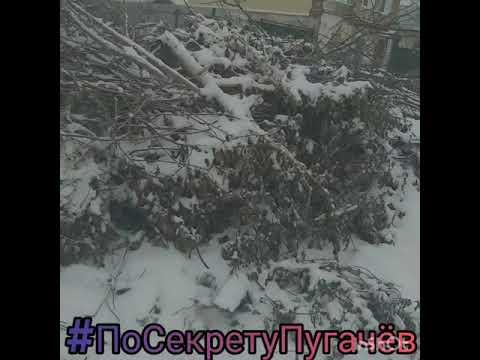 Администрации города  Оборзела. (Пугачев)