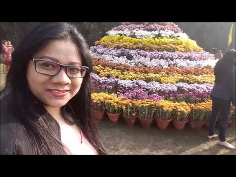 BEST DAY OUT/FLOWER SHOW / CHANDIGARH/ A DAY IN MY LIFE /  VLOG 2