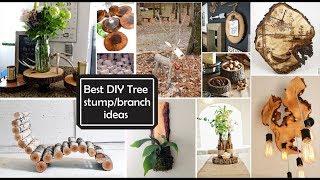 Gambar cover Ideas de Decoración con Ramas y troncos/Best DIY Tree stump/branch ideas